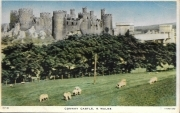 CONWAY CASTLE - PANORAMA - V/T1949